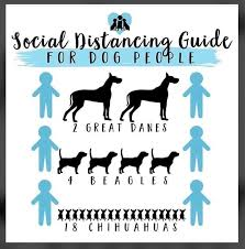 social distancing for dog people